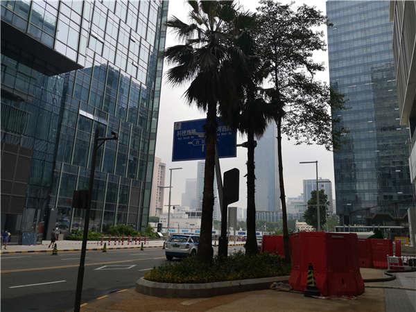 来吧,来索取这份2021年深圳市毕业生入户的指导信息!