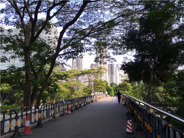 将2021毕业生入户深圳新政策的费用减少30%!