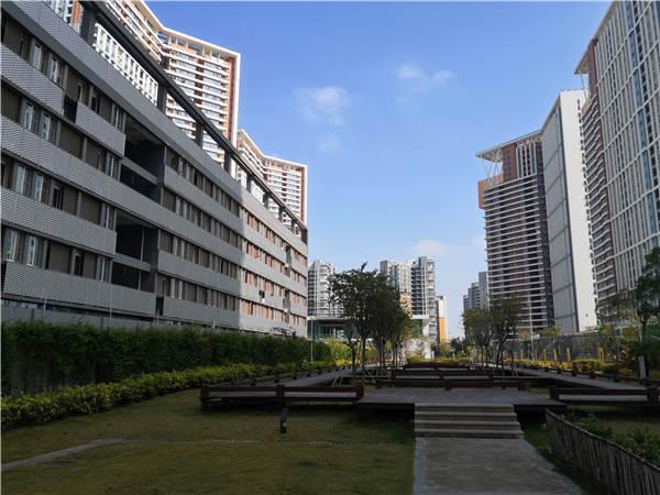 2021年深圳市毕业生入户
