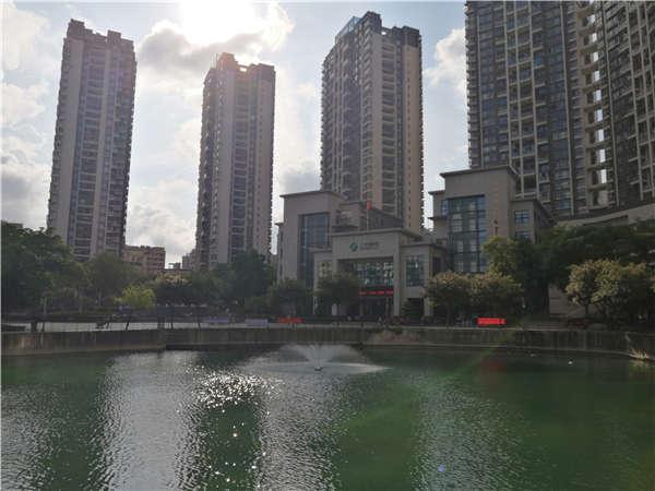 揭露:为什么2021年留学生回国深圳就业落户会这么简单!