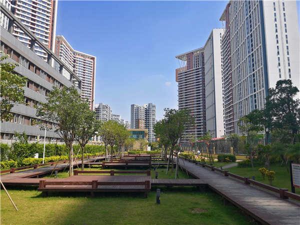 2021年深圳纳税多少可以入户