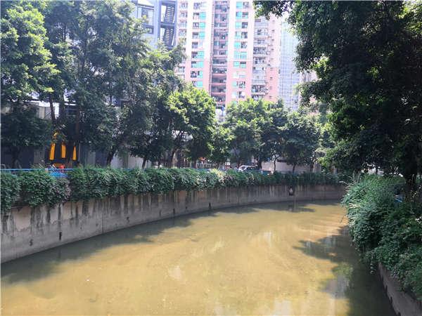 这些2021年深圳纳税入户陷阱可能让你面临巨大的压力!