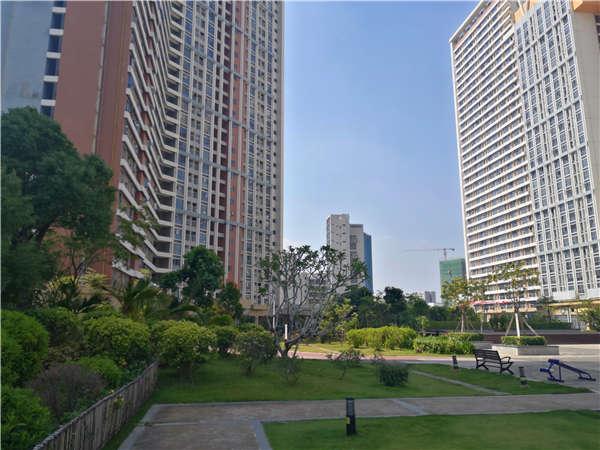 3个省时方法,能够帮你轻松解决深圳新城大厦属于哪个社区问题!
