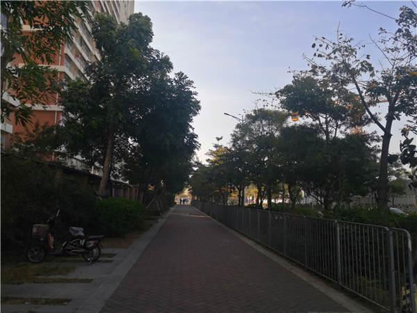 深圳市的户口
