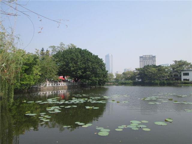 2021年深圳入户,只需要简单几步就搞定!