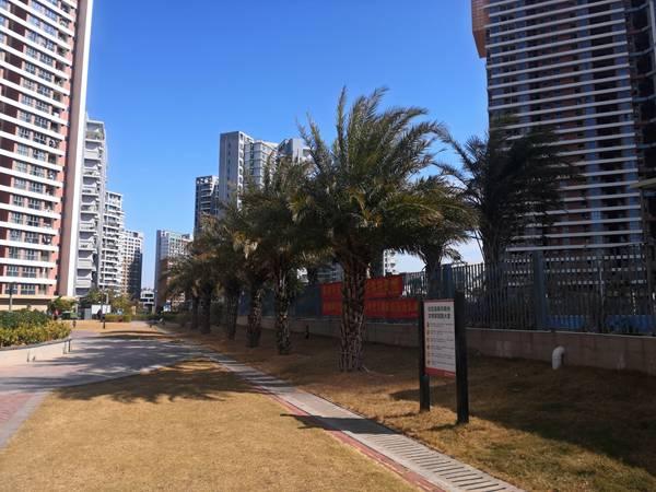 2021年深圳纯积分入户
