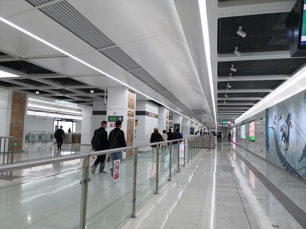 本来我是不信的,但2021年积分入户深圳实在太简单了,你要不要?