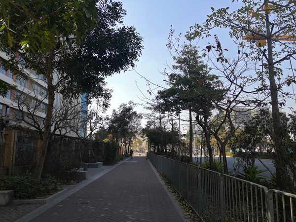 你的2021年哈尔滨户口迁到海南有什么影响有多安全?