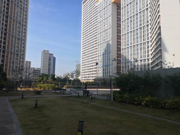 办理指南:教你如何办理2021年积分入户深圳的简单方法!